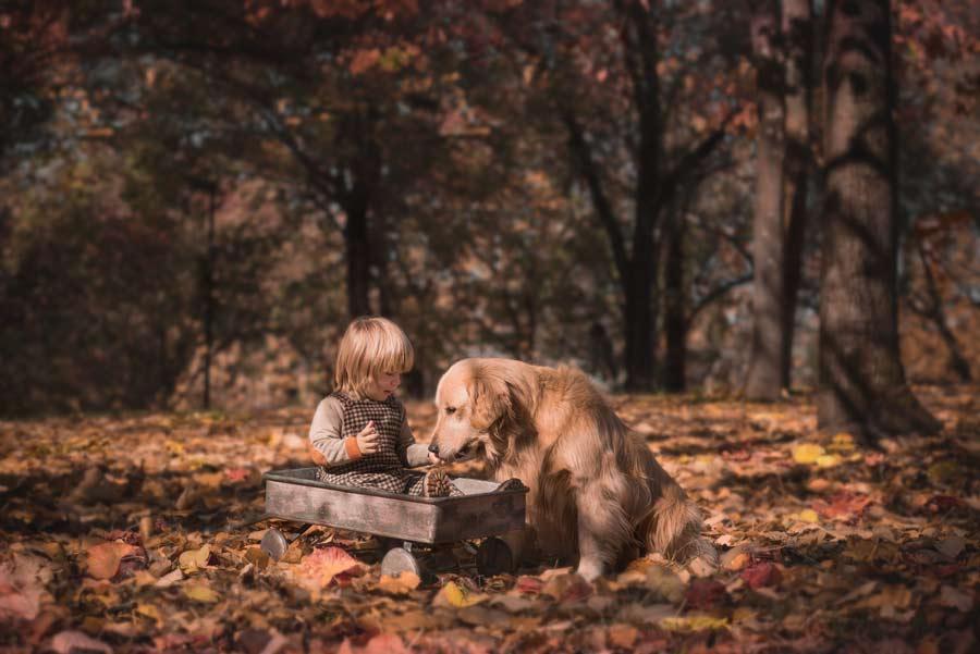 foto bambini-la spezia gabriele zani animali cane bosco autunno #friends