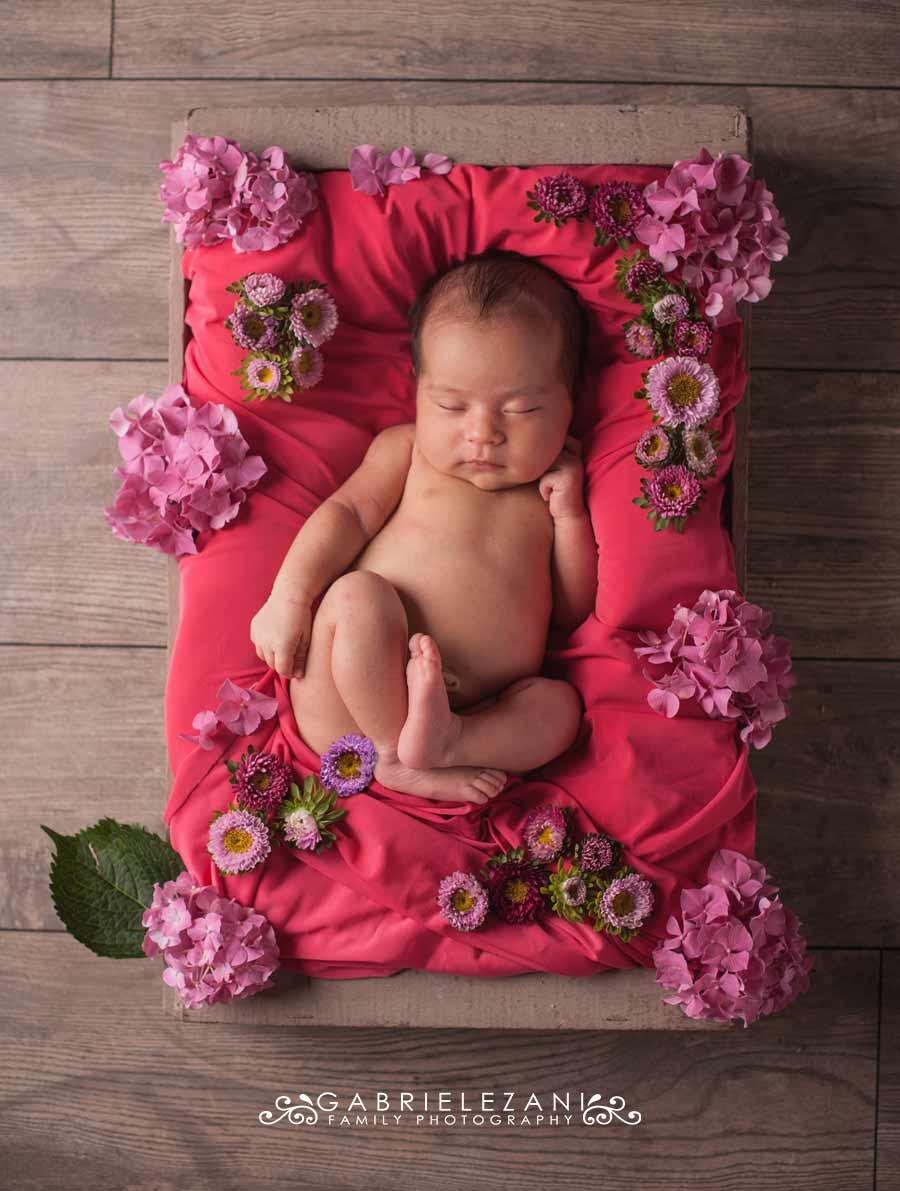 fotografo bambini con fiori neonato cesta ortensie fucsia