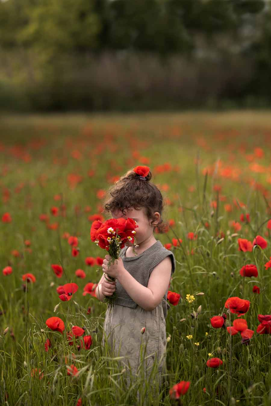 foto bambini e famiglie-la spezia-gabriele zani papaveri