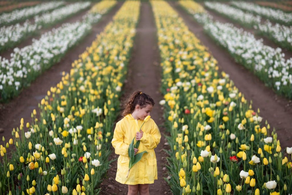 fotografo bambini e famiglie la spezia bimba con impermeabile giallo tra i tulipani