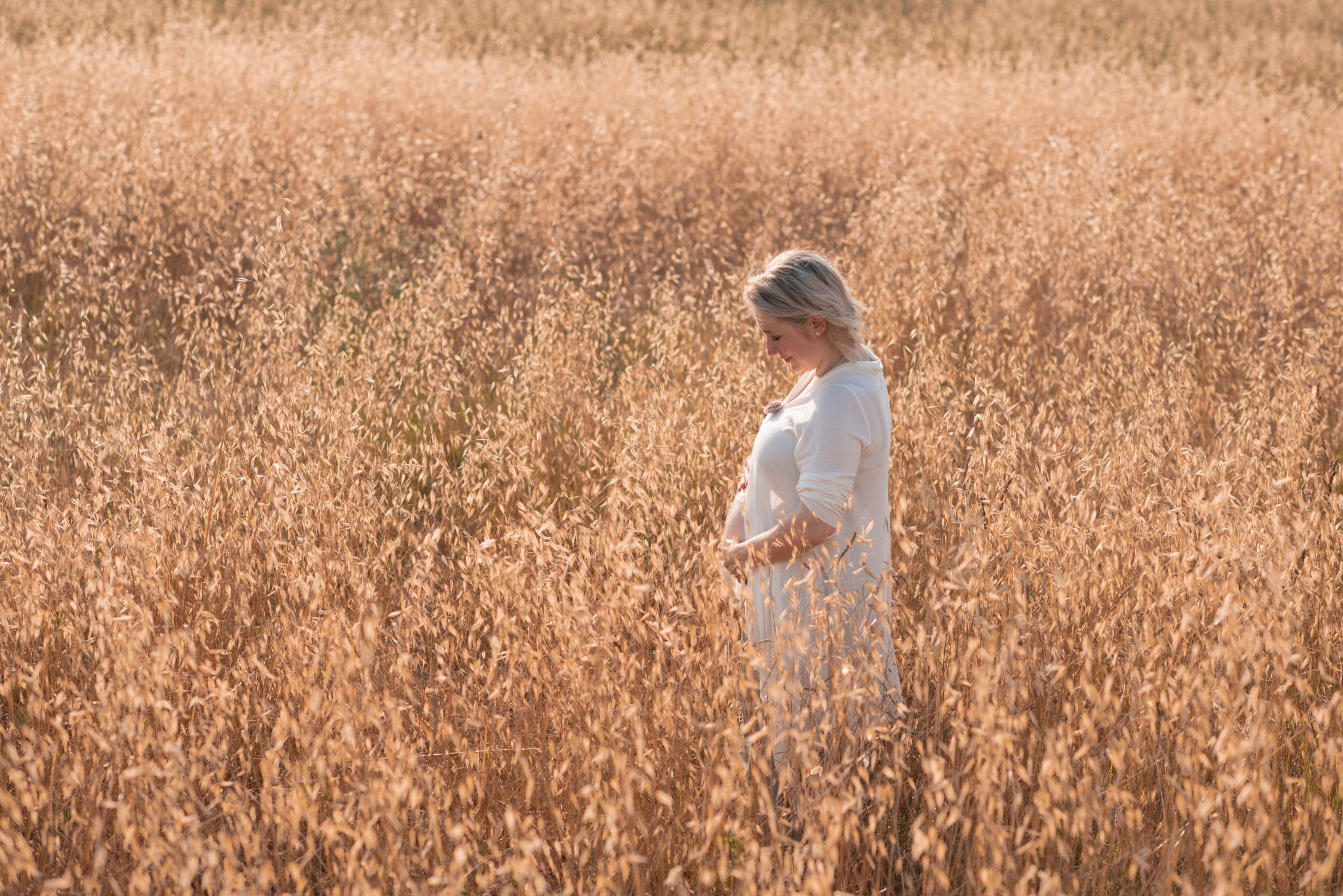 fotografo ritratti in giallo senape la spezia scegli il tuo colore gravidanza in un campo